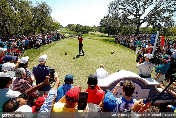 Tiger Woods and Fans at Valspar Championship