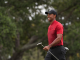 Tiger Woods Favored at Arnold Palmer Invitational