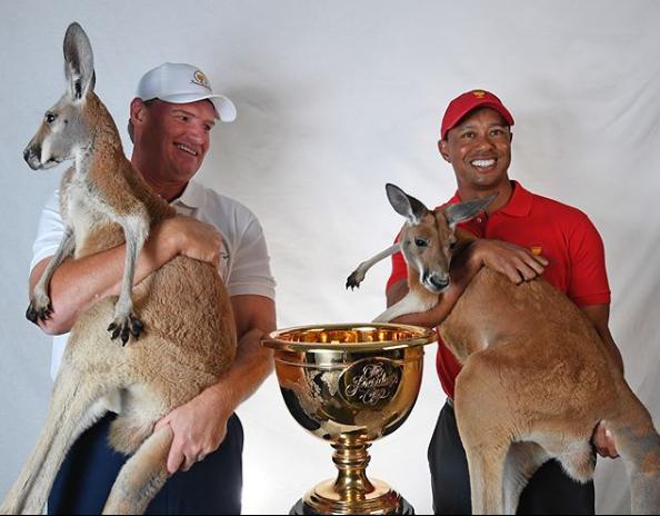 Tiger Woods Ernie Els Kangaroos