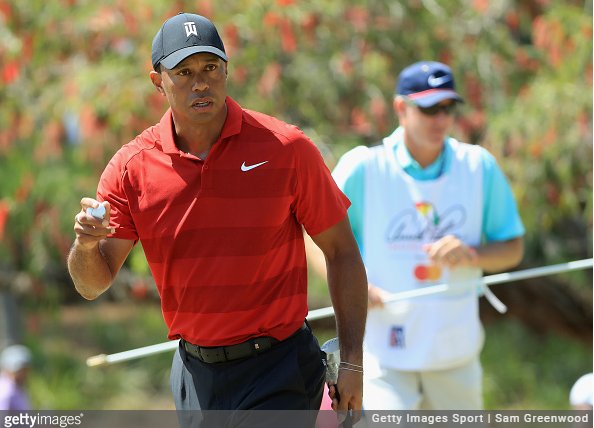 Tiger Woods Rankings FedExCup